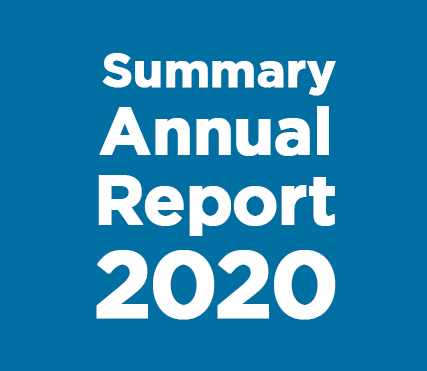 2020 Summary Annual Report